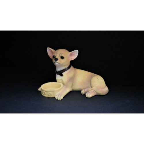 Chihuahua with Bowl